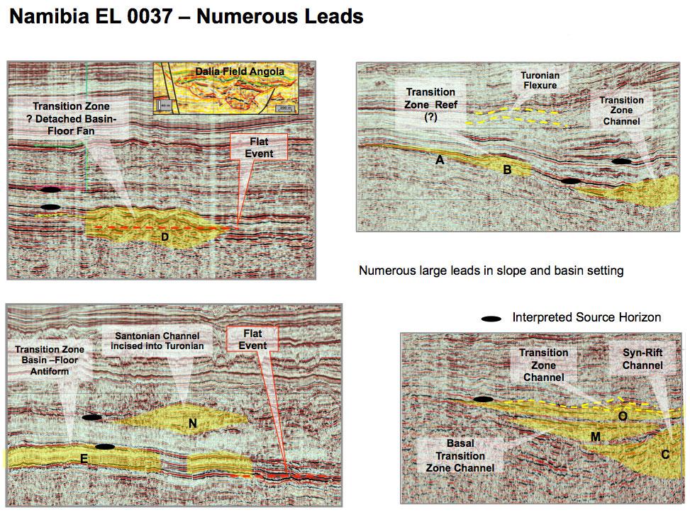 EL 0037 Numerous Leads
