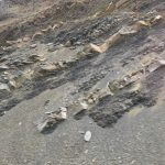 Sacramento Basin Rocks